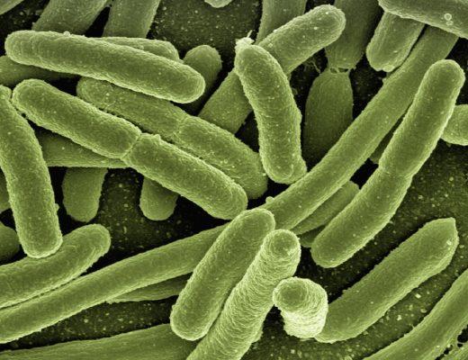 MIKRObiota - WIELKI wpływ na przyszłość. Czy istnieje sposób na zmniejszenie ryzyka rozwoju alergii u dziecka?